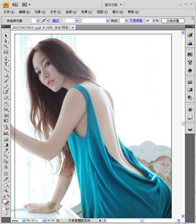 Adobe Illustrator CS4 绿色中文版